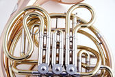 Gold French Horn Close-up On White — Stock Photo