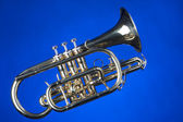 Sheppards Crook Cornet On Blue — Stock Photo