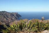 Coastline of Sandy Bay on St Helena — Stock Photo