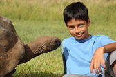 Young boy with giant tortoise — Stock Photo