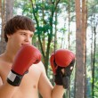 Boxer at the park — Stock Photo #6602162