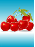 Red cherry — Stock Vector