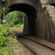 Old railway bridge with train track running through it — Stock Photo #6020538