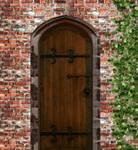 An old door on a brick wall — Stock Photo