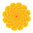 Yellow flower — Stock Vector