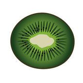 Kiwi slice — Stock Vector