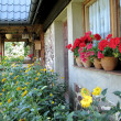 Flowery veranda - Stock Photo