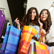Stock Photo: Females shopping bags