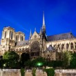 Notre Dame de Paris — Stock Photo #6373985