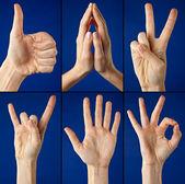 Gestures hands — Stock Photo