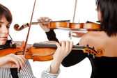 Violinists isolated — Stock Photo