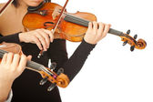 Violinists no face isolated — Stock Photo