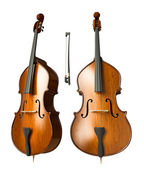 Double bass — Stock Photo