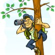 Paparazzi photograph from a tree — Stock Vector