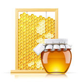 Jar with honey and honeycomb — Vetor de Stock