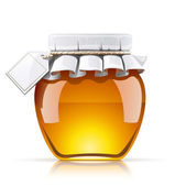 Jar with honey — Stock Vector