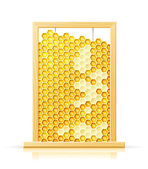 Bee honeycomb in frame — Stock Vector