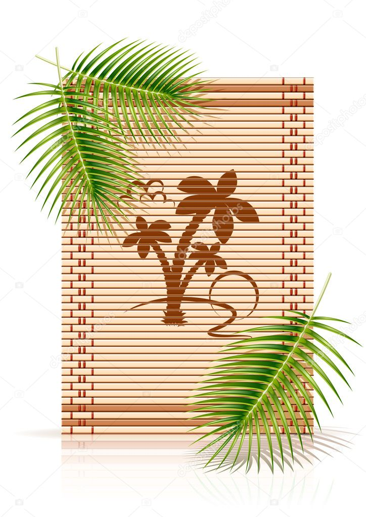 Bamboo mat tropic palm vector illustration isolated on white background — Stock Vector #5874991