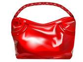 Girl handbag — Stock Vector