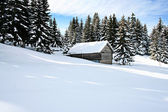 Cottage in snow — Stock Photo