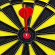 Game Darts — Stock Photo