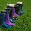 Stock Photo: Mixed pairs of wellingtons