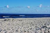 Marine landscape — Stock Photo