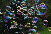 Soap bubbles — Stock Photo