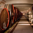 Wine cellar — Stock Photo #6442000