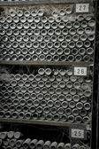 Bottles of wine in rows in wine cellar with dust — Stock Photo