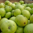 Green apples in transport box — Stock Photo