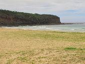 Natural beach in australia — Stockfoto