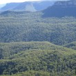 Forest and hills in australia — Stock Photo