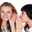 Stock Photo: Two girls gossiping
