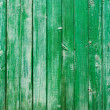 Stock Photo: Green wall of an old house