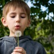 Boy with dandelion — Stock Photo #5966497