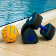 Dumbbells and Ball — Stock Photo