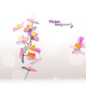 Beauty floral background — Stock Photo