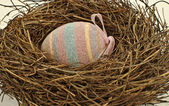 Easter egg in birds nest — Stock Photo