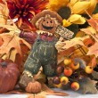 Happy Fall — Stock Photo