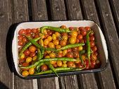 Pepper and tomato — Stockfoto