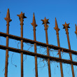 Wrought iron fence - Stock Photo