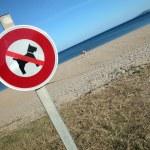 geen hond teken op het strand — Stockfoto