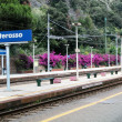 Monterosso railway station, Cinque Terre, Italy — Stock Photo