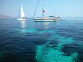 Barche a vela surf — Foto Stock