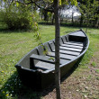 Old boat in meadow - Stock Photo