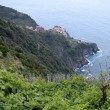 Corniglia and vineyards, Cinque Terre, Italy - Stock Photo
