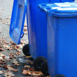 Garbage cans — Stock Photo