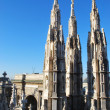 Cathedral of Milan - Stok fotoraf