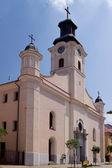 Igreja catedral católica em uzhgorod — Foto Stock